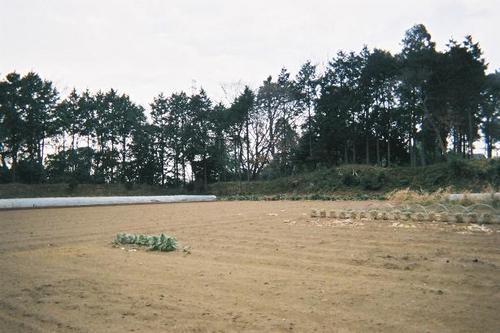 kanasugi-06