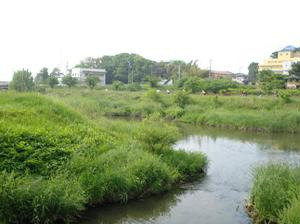 Oohorigawa