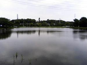 Oyumiike