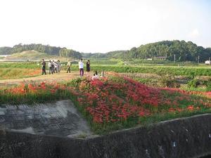 Yakachigawa1
