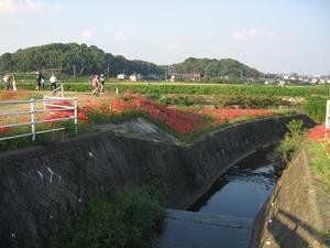 Yakachigawa3