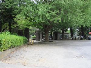 Sagamidai1