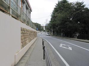 Sagamidai2