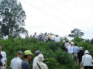 Kofuninoboru