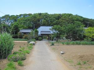 Shibuyasoujiseika