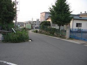 Chikasakimichi_1