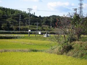 midarebashi-enkei