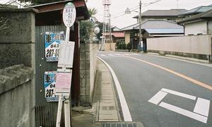 motosakura-sagakuba