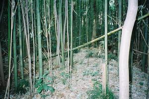 nagasaku-02