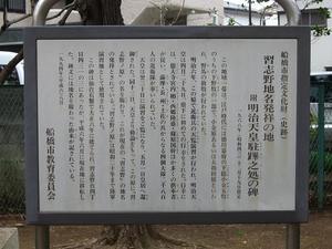 narashino-chimei