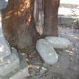 豊郷神社の女性神(石は男性)