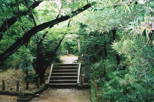 千葉城の物見址