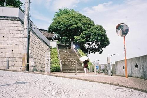権現山城址 本覚寺