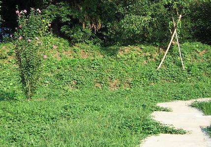 岩戸城の土塁址