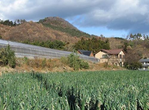 桐生城遠景