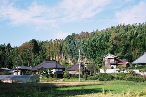 本佐倉城の根古谷