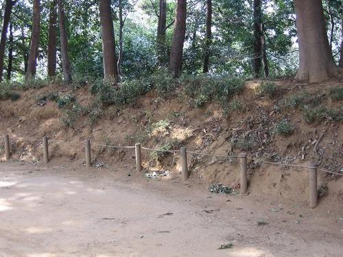 小金大谷口城金杉口付近の郭の土塁