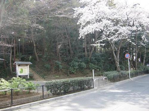 歴史公園になっている小金大谷口城址