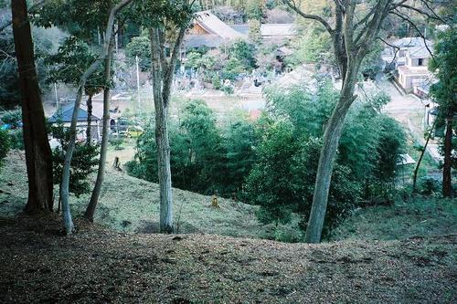 臼井城址より円応寺を望む